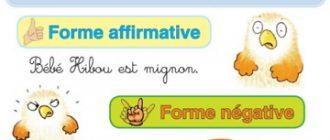 forme negative